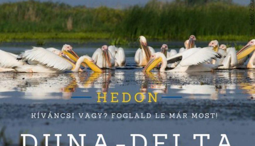 Gyere és utazz a Hedonnal